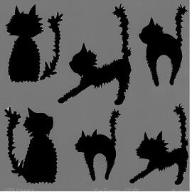 Šablona kočky 20*20