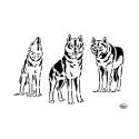 Šablona na textil vlci A4