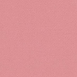 Akrylová barva Acrilico 75 ml-Rose light