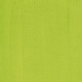 Akrylová barva Acrilico 500ml-Yellow greenish