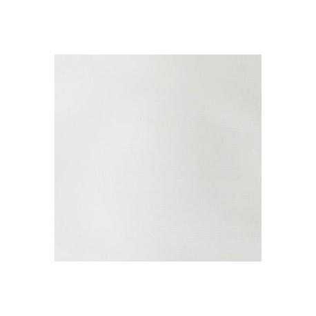 aactitan_white.jpg