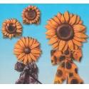 Forma na odlévání slunečnice