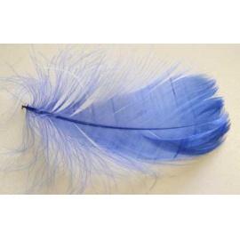 Peří marabu 20 ks  tm. modré