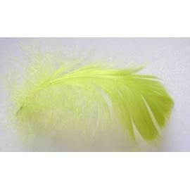 Peří marabu 20 ks sv.zelené