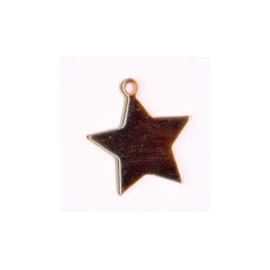 Výsek hvězda