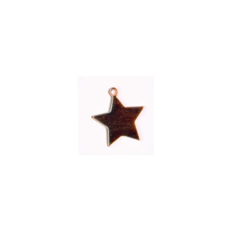 shvezda.jpg