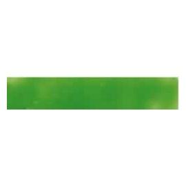 Enkaustick vosk blok - listově zelený 06