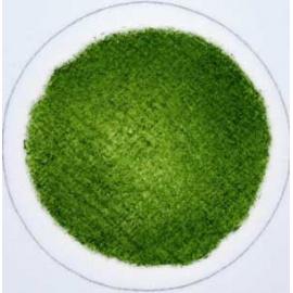 Tiskařská barva pro ofset a litografii 60 ml - olivově zelená